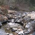 多摩川へ・・・沢の水