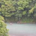 梅雨時の多摩川
